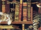 Хорошие книги меняют мир!