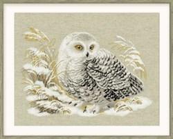 Набор для вышивания  Белая сова - фото 14341