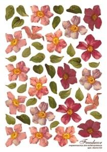 Термопленка Орхидеи - фото 14903