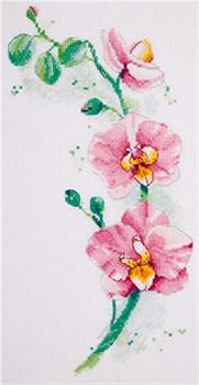Набор для вышивания  PANNA   Орхидея - фото 22884