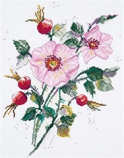 Набор для вышивания  PANNA   Майский шиповник - фото 22885