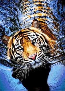 Набор для вышивки бисером  Тигр в реке - фото 26030