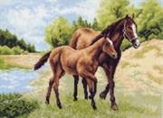 Рисунок на канве  Лошади
