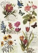 Рисовая бумага для декупажа  Ботаника