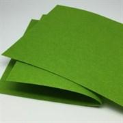 Фетр жёсткий, цвет: светло-зелёный (№ 042), 20 * 30 см, толщина 1 мм
