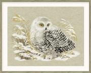 Набор для вышивания  Белая сова