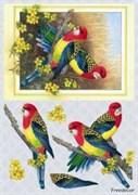 Декупажная карта 3D  Попугайчики
