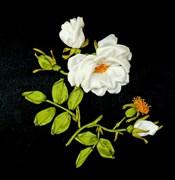 Роза Мальтийского Ордена