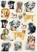 Скрап-карта  Собаки большие