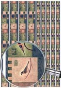 Скрап-карта  Бордюры Птицы