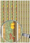 Скрап-карта  Бордюры Фрукты-ягоды