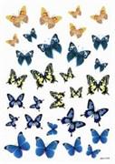 Пленка Freedecor для светлых поверхностей  Бабочки