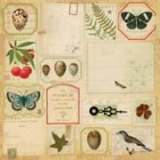 Бумага  Флора и фауна