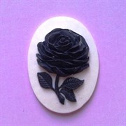 Камея  Роза черная  30х40 на белом