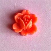 Кабошон  Роза коралловая