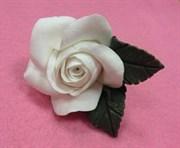 Брошь из глины  Роза белая