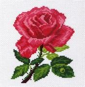 Рисунок на канве  Роза