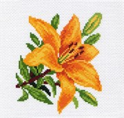 Рисунок на канве  Лилия оранжевая