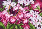 Рисунок на канве  Орхидеи