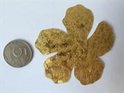 Пайетки декоративные. Золотые большие цветы