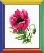 Набор для вышивания  Розовый мак