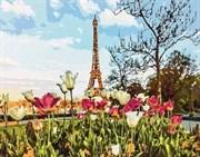 Набор для рисования по номерам  Парижский пейзаж
