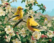Набор для рисования по номерам  Желтые птички