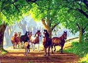 Набор для рисования по номерам  Табун лошадей