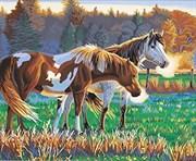 Набор для рисования по номерам  Лошади на прогулке