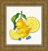 Набор для вышивания  Сочный лимон