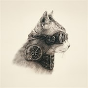 Наволочка  Супер кот