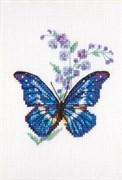 Набор для вышивания  Синюха  и бабочка