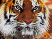 Набор для вышивки бисером  Амурский тигр