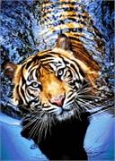 Набор для вышивки бисером  Тигр в реке