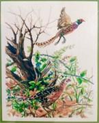 Набор для вышивания  Artiste Pheasants