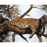 Набор для рисования по номерам  Леопард на отдыхе