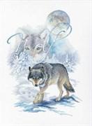 Набор для вышивания  Волк  (25,5*35см)
