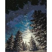 Набор для рисования по номерам 'Зимний лес' 40*50см