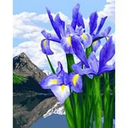 Набор для рисования по номерам 'Цветы весны' 40*50см